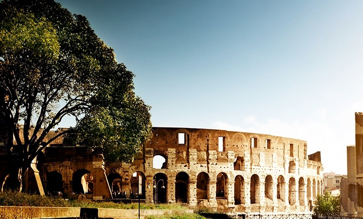 Dona un albero a Roma
