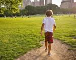 Il futuro verde delle città italiane